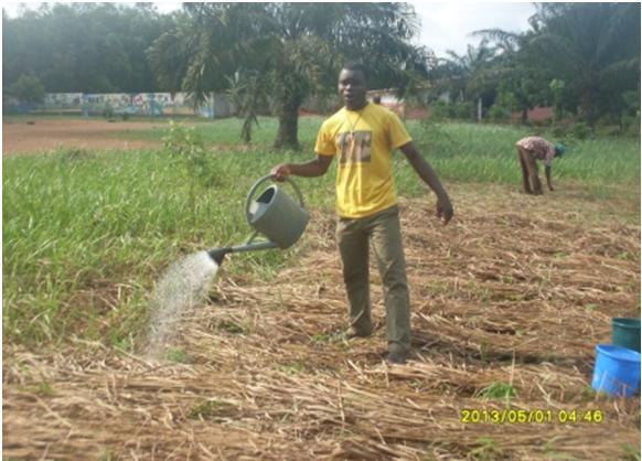 Formation en agriculture biologique